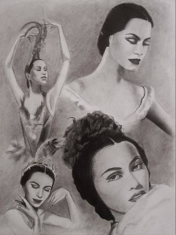 Ballerina Poster featuring the drawing Maria Tallchief by Amber Stanford