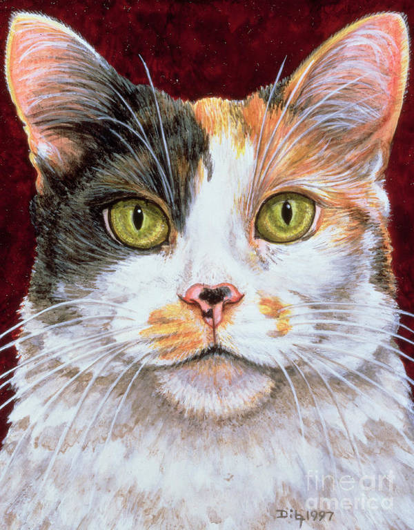 Cat Poster featuring the painting Marigold by Ditz