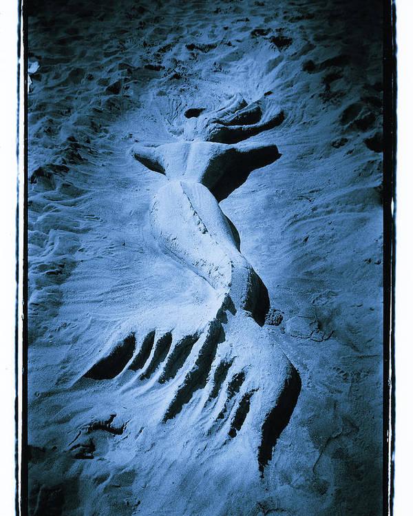 Mermaid Poster featuring the photograph Mermaid by Tony V Martin