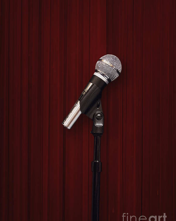 Microphone Poster featuring the photograph Mic by Margie Hurwich