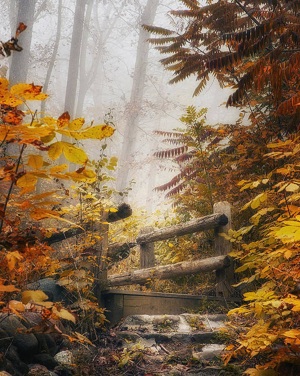 Bridge Poster featuring the photograph Misty Footbridge by Scott Norris