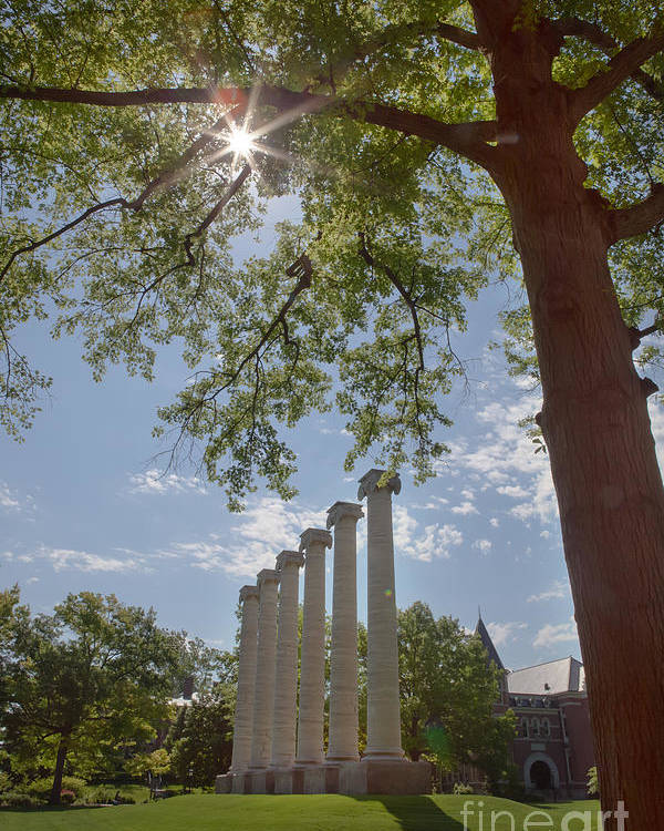 Mizzou Poster featuring the photograph Mizzou Columns Sunflare by Kay Pickens