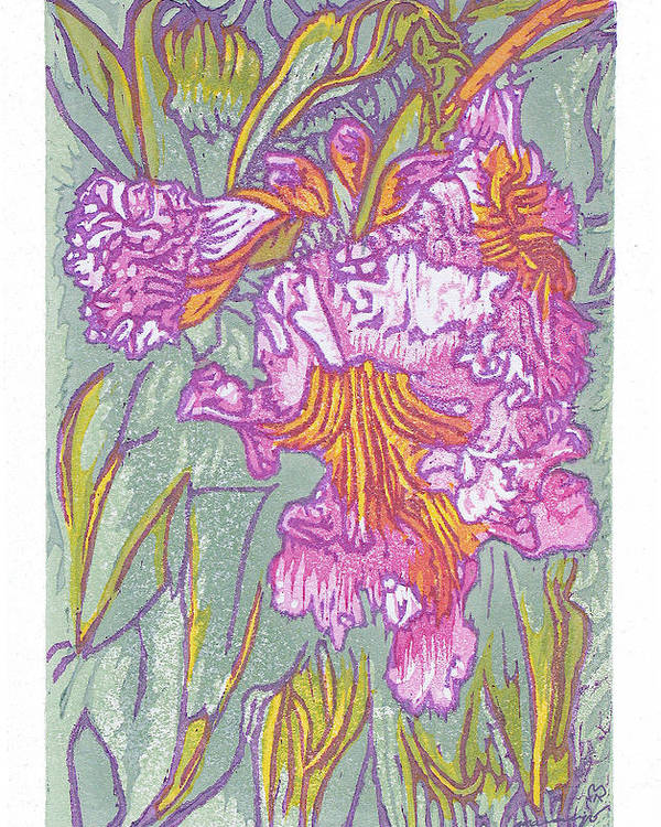 Flower Poster featuring the painting Mojave Willow by Maria Arango Diener