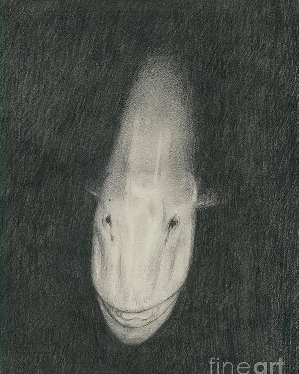 Musky Fish Poster featuring the drawing Monster by Larry Green
