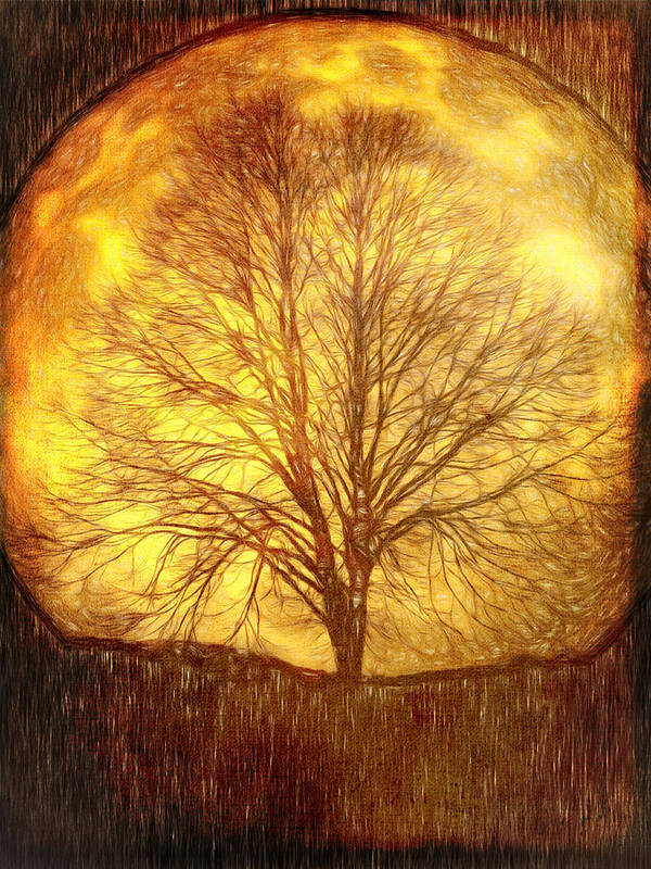 Tree Poster featuring the digital art Moon Tree by Farrukh Jabeen