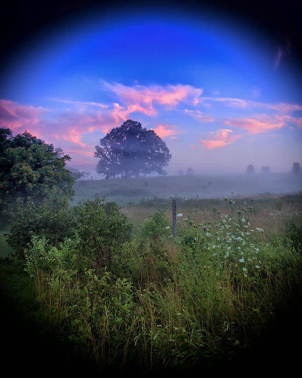 Sunrise Poster featuring the photograph Morning Dream by Alan Raasch
