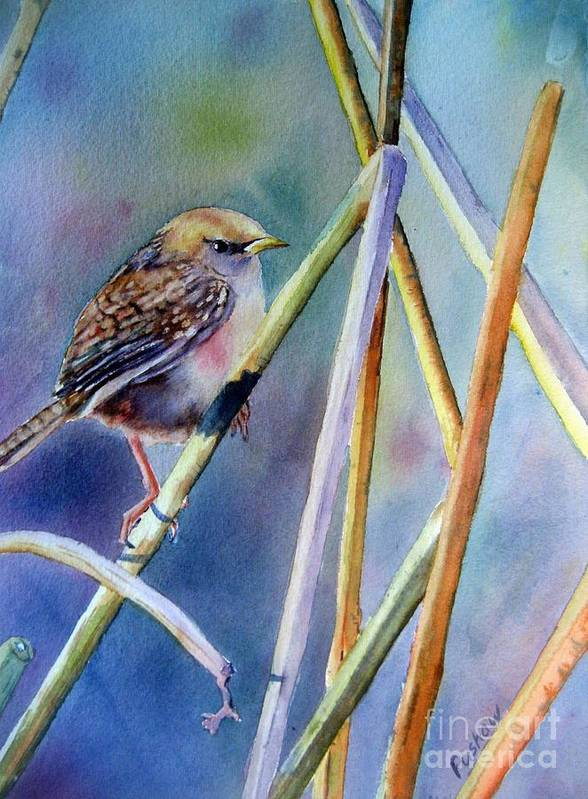 This Little Marsh Wren Greets A New Day. A Day Full Of Promise And Blessings. Poster featuring the painting Morning Has Broken by Patricia Pushaw