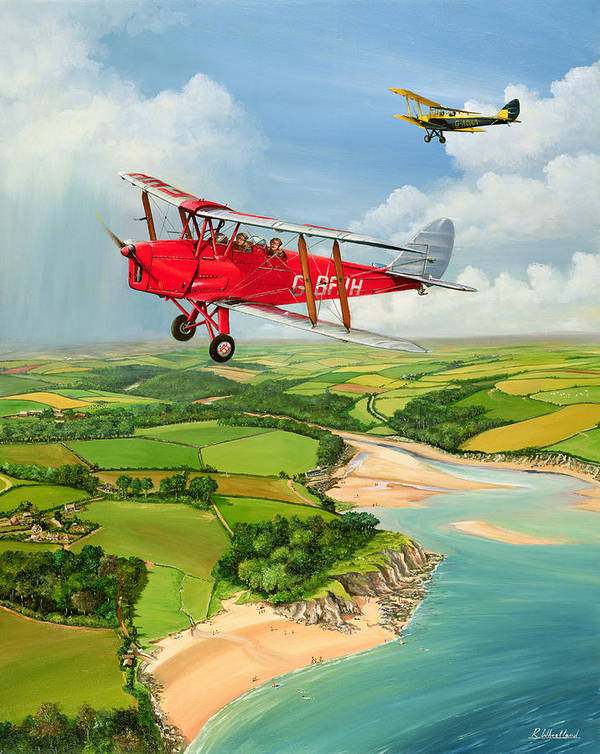 Moth Poster featuring the painting Mothecombe Moths by Richard Wheatland