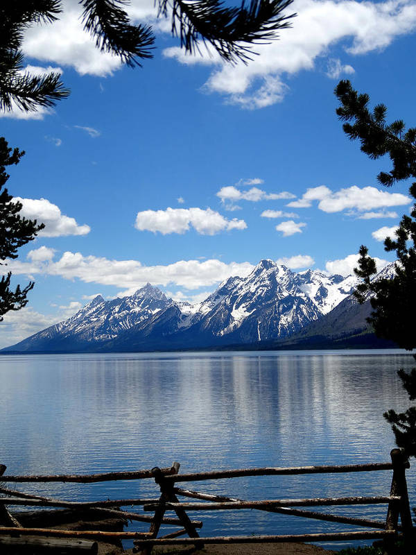 Mountain Reflection On Jenny Lake Poster featuring the photograph Mountain Reflection On Jenny Lake by Dan Sproul