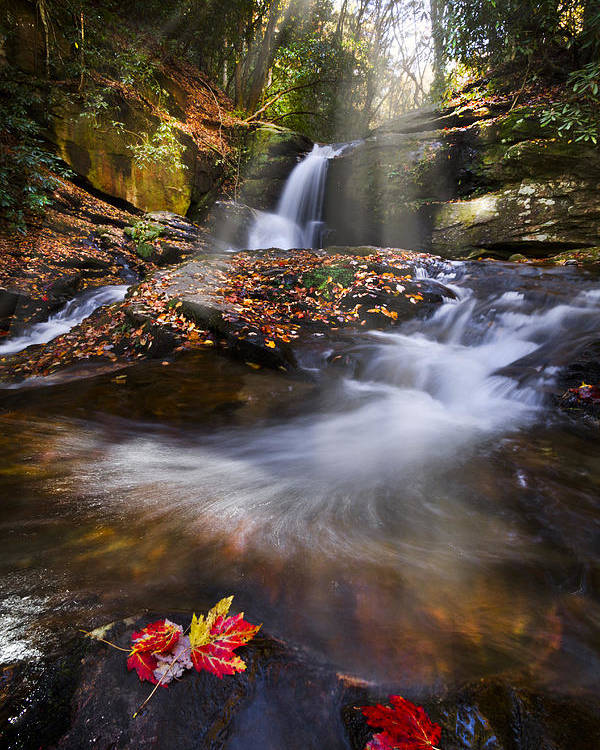 Appalachia Poster featuring the photograph Mystical Pool by Debra and Dave Vanderlaan