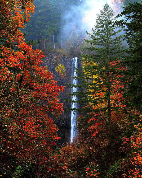 Latourell Falls Poster featuring the photograph Nature's Color's by Douglas Berg