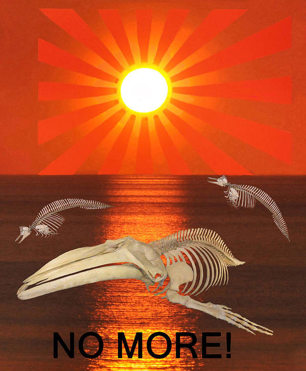 Sea Shepherd Poster featuring the digital art No More by Eric Kempson