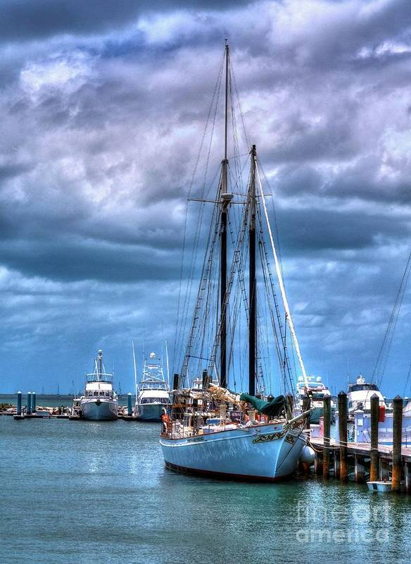 Sail Boats Poster featuring the photograph Not For Sail by Mel Steinhauer