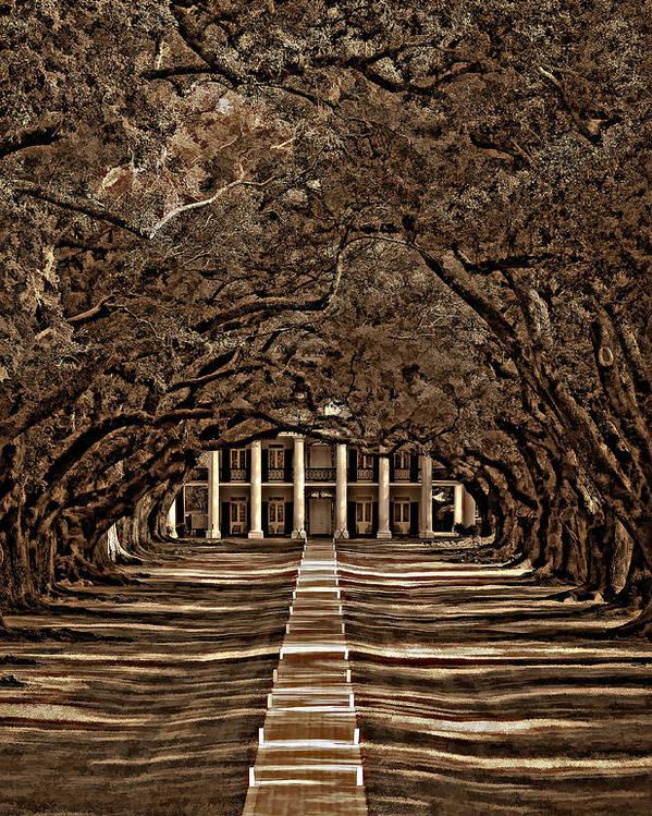 Oak Alley Plantation Poster featuring the photograph Oak Alley Bw by Steve Harrington