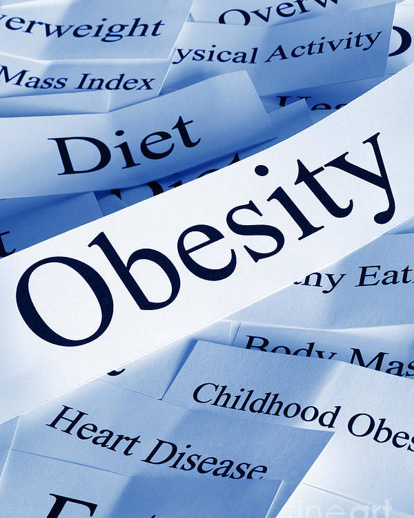 Concept Poster featuring the photograph Obesity Concept by Colin and Linda McKie