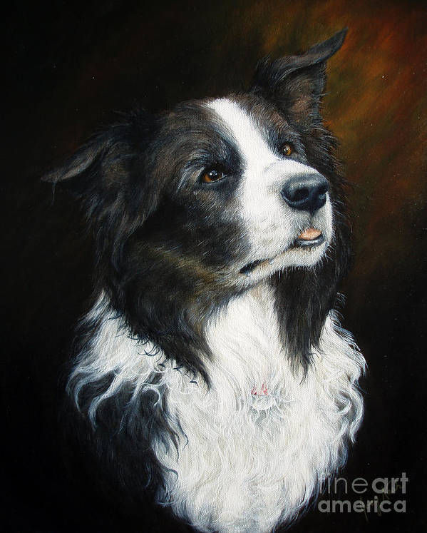 Border Collie Poster featuring the painting Old Faithful by Joey Nash