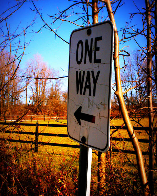 One Way Poster featuring the photograph One Way by Amanda Stross