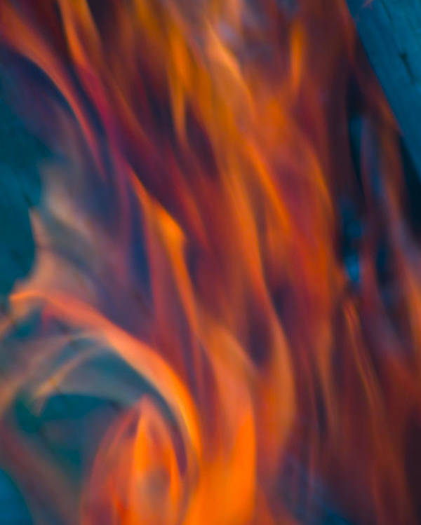 Hot Poster featuring the photograph Orange Fire by Yulia Kazansky