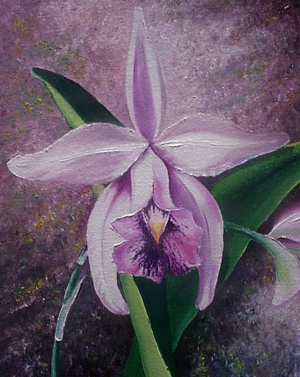 Orchid Purple Floral Botanical Poster featuring the painting Orchid Lalia by Karin Dawn Kelshall- Best