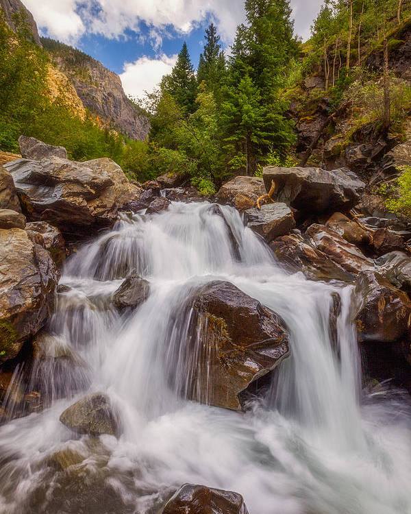 Waterfall Poster featuring the photograph Ouray Wilderness by Darren White