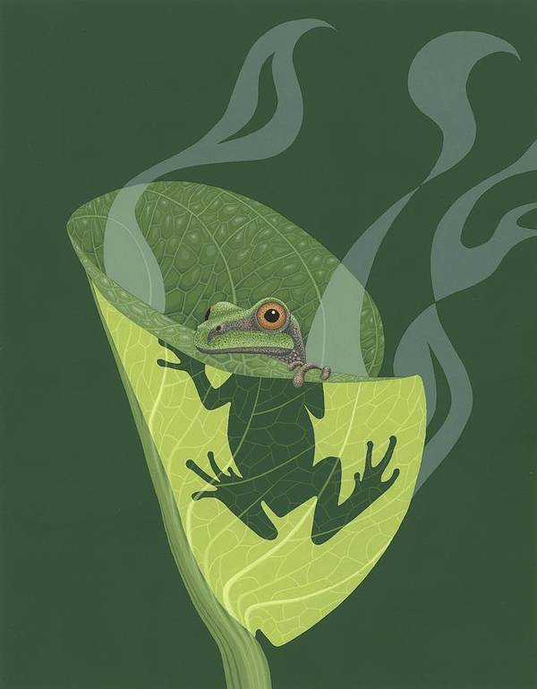 Painting Poster featuring the painting Pacific Tree Frog In Skunk Cabbage by Nathan Marcy
