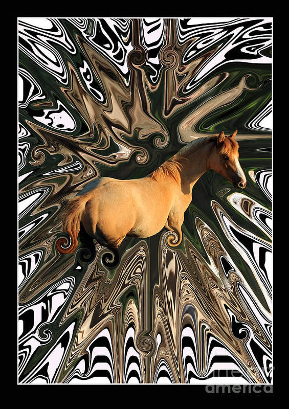 Abstract Poster featuring the photograph Pale Horse by Aidan Moran