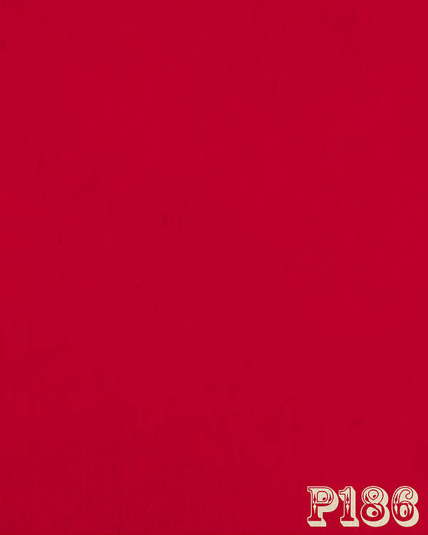 Pantone 186 Fire Engine Red Color On Worn Canvas Poster