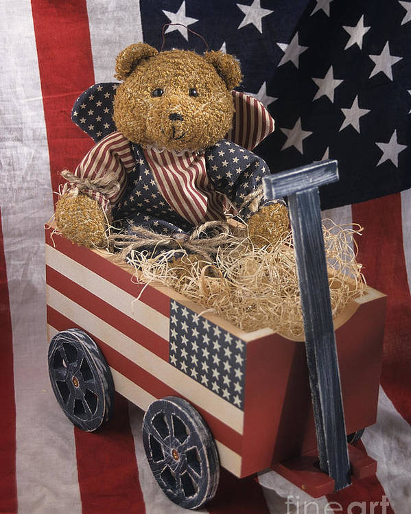United States Poster featuring the photograph Patriot Bear by Sharon Elliott