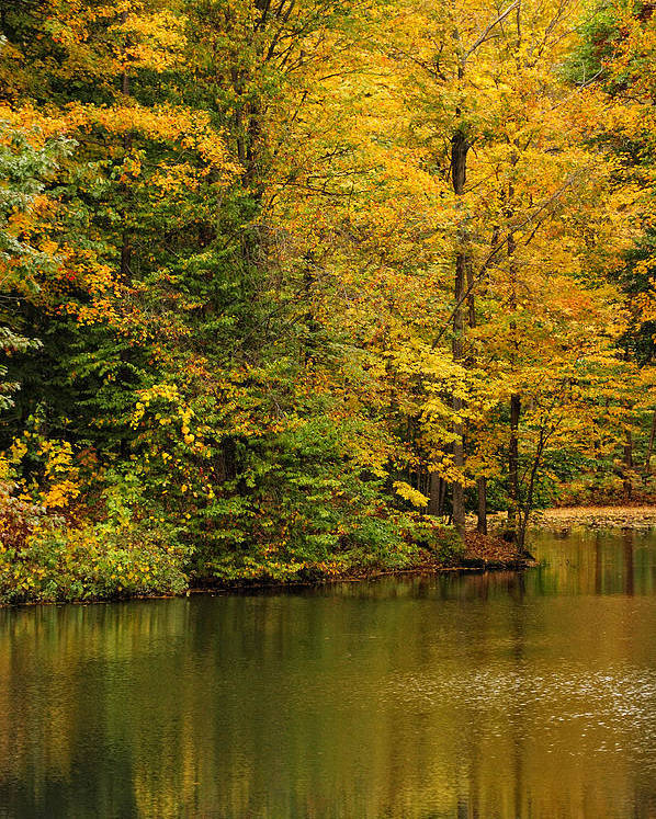 Baldwinsville Poster featuring the photograph Peaceful Pond by Don Dennis