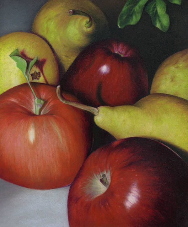 Fruits Poster featuring the drawing Pears And Apples by Natasha Denger