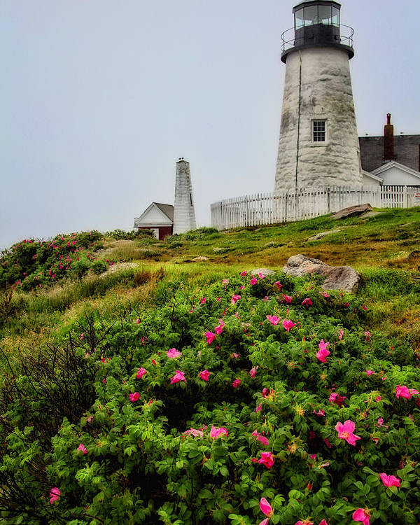 Lighthouse Poster featuring the photograph Pemaquid Point by Karol Livote