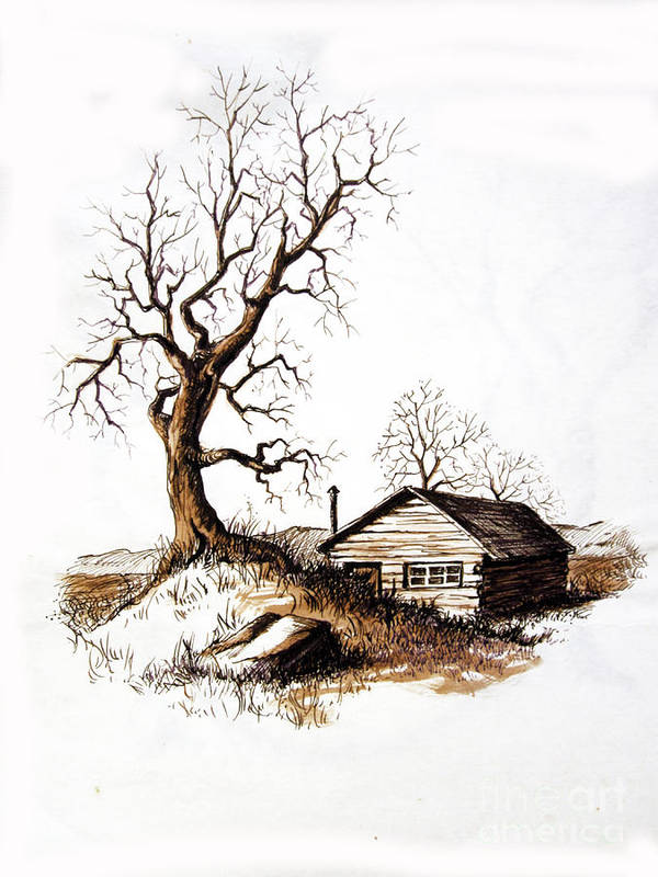 Pen And Ink Poster featuring the drawing Pen And Ink 1 by Carol Hart
