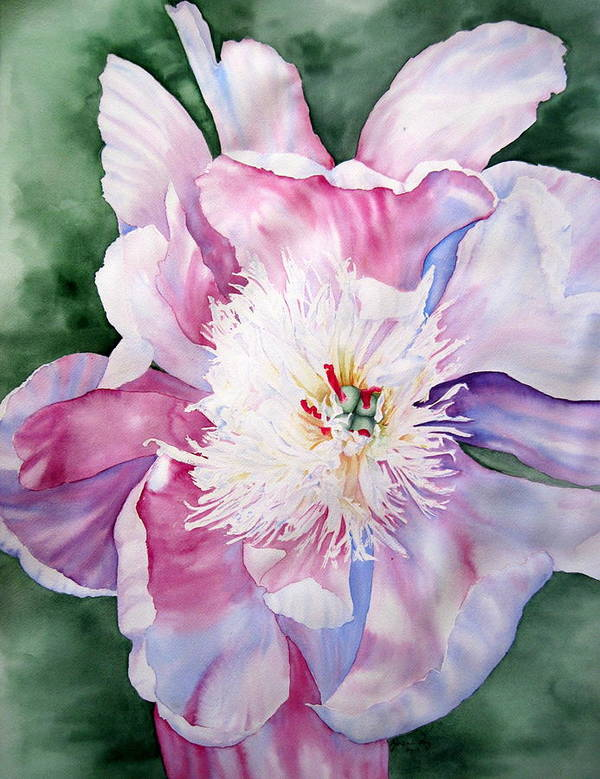 Flower Poster featuring the painting Peony At Dusk by Joann Perry