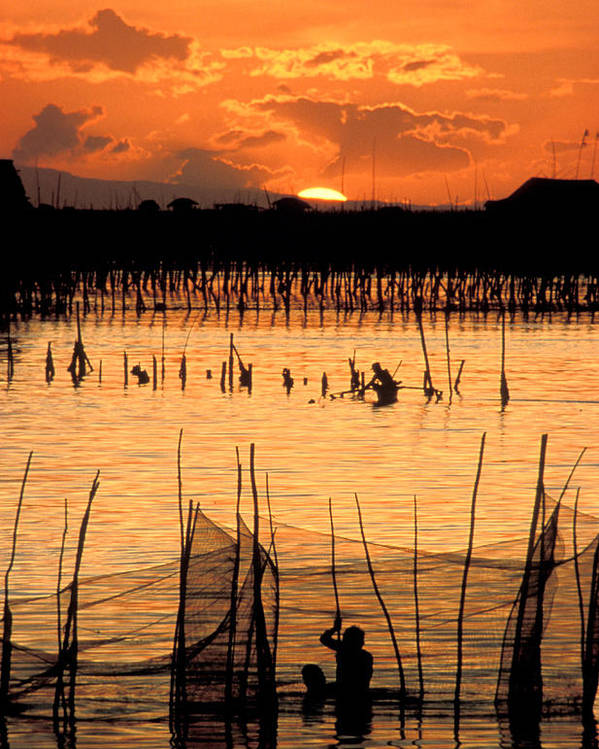 Vertical; Outdoors; Sunset; Incidental People; Silhouette; Non Urban Scene; Tranquility; Sea; Fishing; Manila; Philippines; Wading; Fishing Industry; Fishing Net Poster featuring the photograph Philippines Manila Fishing by Anonymous