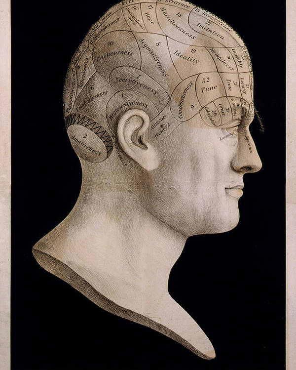 Abstract Poster featuring the digital art Phrenology by Georgia Fowler