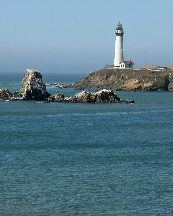 Lighthouse Poster featuring the photograph Pigeon Point Lighthouse Near Half Moon Bay-san Francisco by Suzanne Gaff