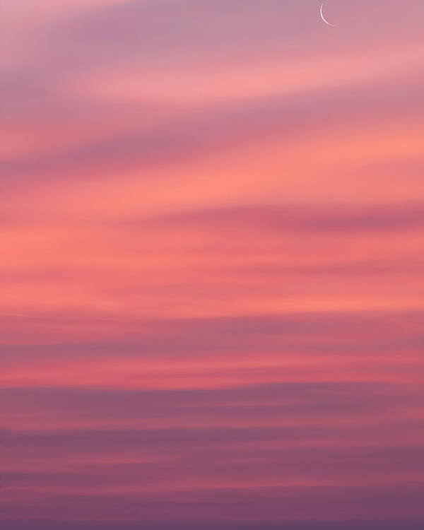 Sunrise Poster featuring the photograph Pink Moon by Bill Wakeley
