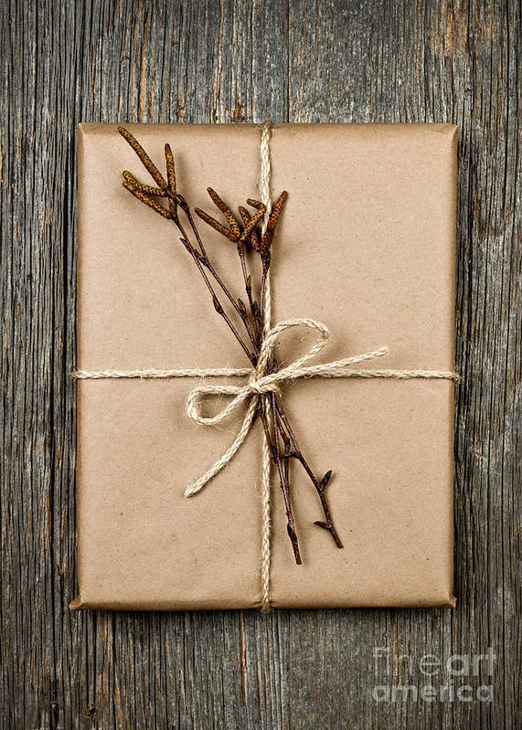 Package Poster featuring the photograph Plain Gift With Natural Decorations by Elena Elisseeva