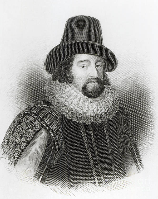 Male Poster featuring the drawing Portrait Of Francis Bacon by English School