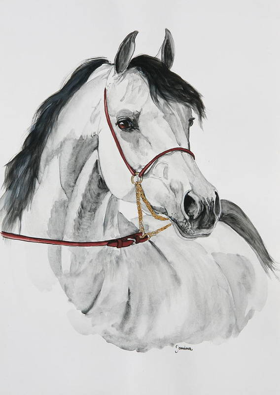 Horse Original Painting Poster featuring the painting Psynister by Janina Suuronen