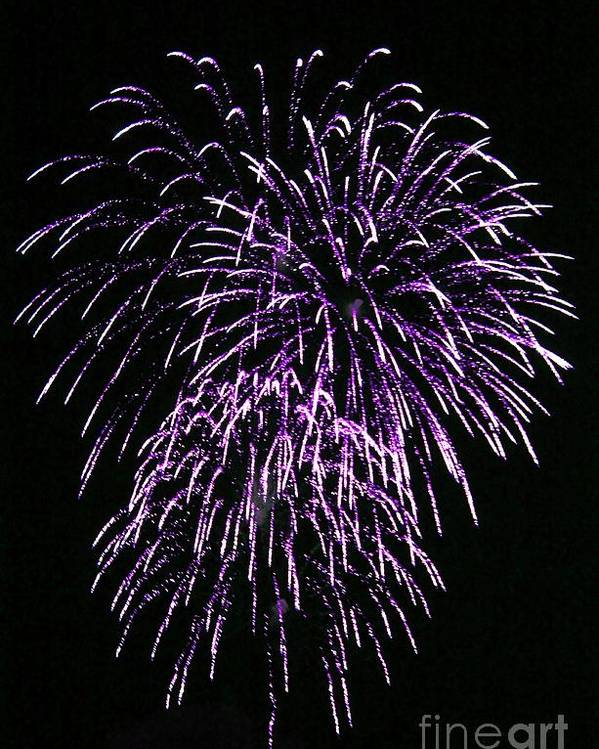 Fireworks Poster featuring the photograph Purple Fire by Yumi Johnson