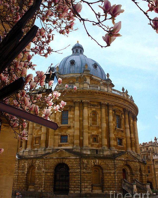 Radcliffe Camera Poster featuring the photograph Radcliffe Camera Bodleian Library Oxford by Terri Waters