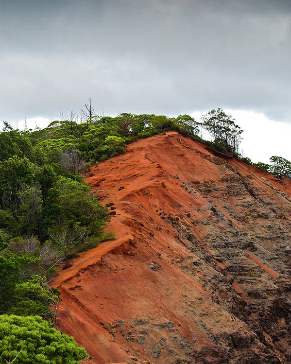 Christi Kraft Poster featuring the photograph Red Cliff At Waimea by Christi Kraft