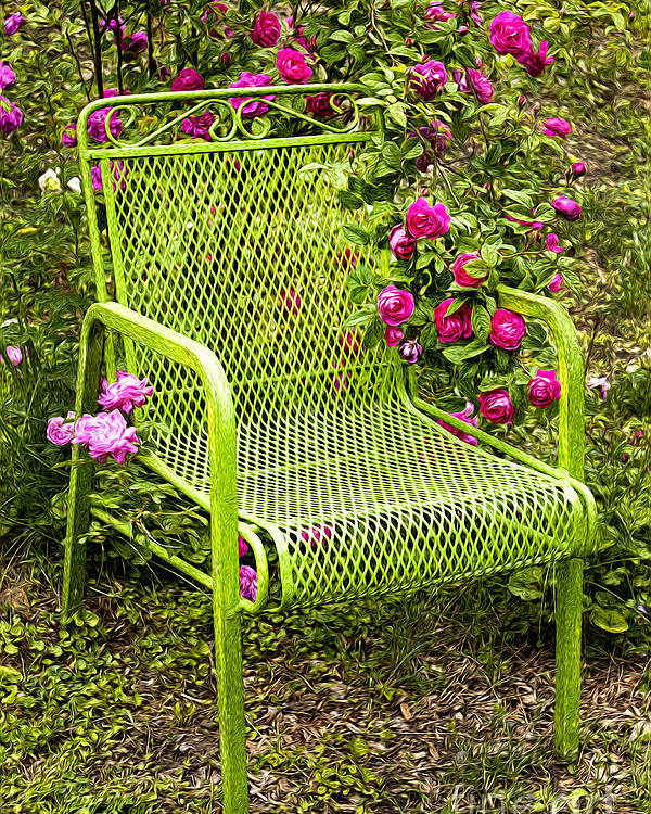 Green Poster featuring the photograph Red Roses Green Chair by Lena Auxier