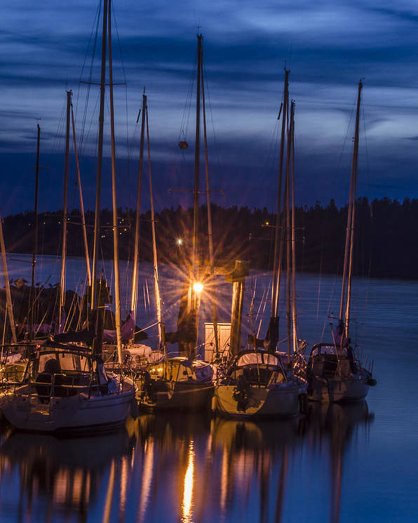 Reflections Poster featuring the photograph Reflections In The Night by Irene Theriau