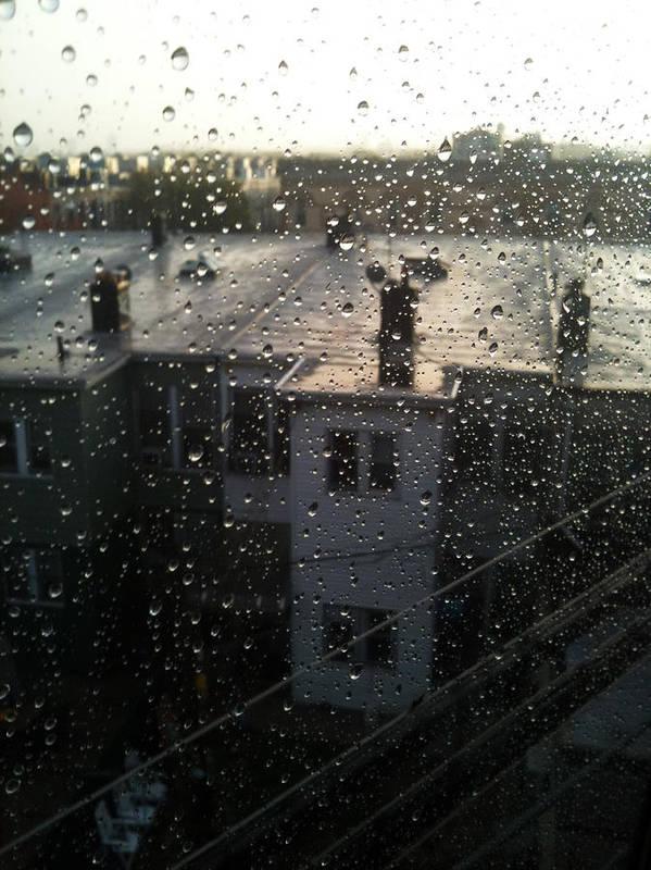 Mieczyslaw Poster featuring the photograph Ridgewood Houses Wet With Rain by Mieczyslaw Rudek Mietko