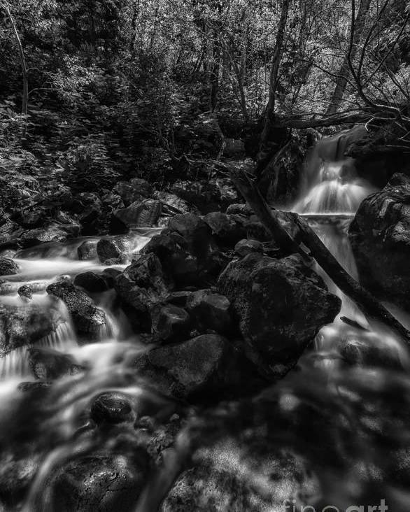 B&w Poster featuring the photograph Rock Island Bw by Mitch Johanson