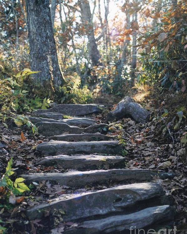 Nc Poster featuring the photograph Rock Stairs by Stacy C Bottoms