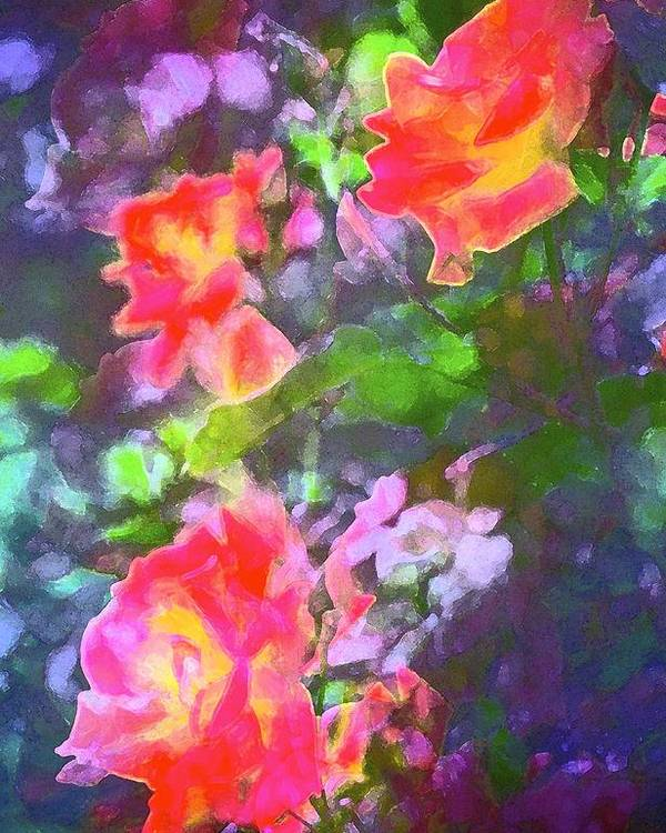 Floral Poster featuring the photograph Rose 192 by Pamela Cooper