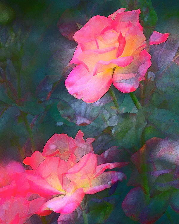 Floral Poster featuring the photograph Rose 194 by Pamela Cooper